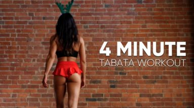 4-Minute Fat Burning Workout   Tabata for Beginners