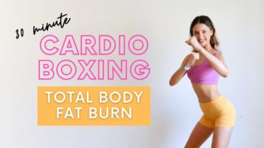 CARDIO BOXING WORKOUT AT HOME   30 min Fat Burning HIIT